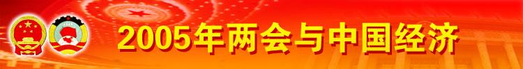 2005年两会与中国经济