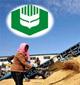 中储粮粮食贸易业务被叫停