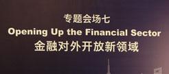 """专题会场七:金融对外开放新领域"""""""
