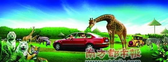 广东人最喜爱的中国旅游目的地评选(组图)