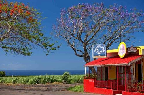 毛里求斯感官之旅 世界级目的地美到窒息(组图)