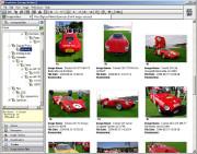 照片管理软件 StudioLine Photo Basic 4.2.34