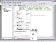 PHP集成开发环境 Zend Studio 13.6.0