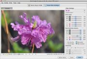 经典照片处理工具 Neat Image for Linux 8.2