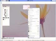 图片浏览器 PRIMA Image Racer  3.0