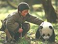 电影《熊猫回家路》