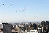 直―9型侦察直升机梯队