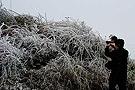 广东韶关气温骤降飘雪结冰