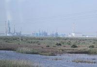黄河入海口湿地的化工厂
