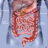 胃肠系统疾病