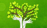 第20期:拯救森林