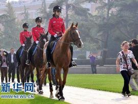 大连骑警每匹警马日花费80元 被指长官意志产物