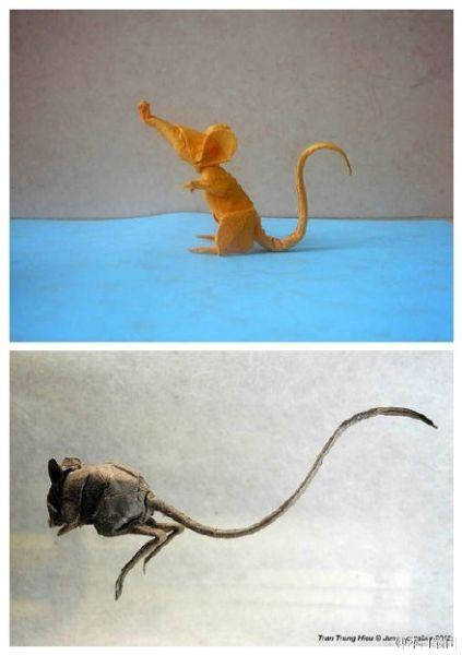 越南折纸达人的创意动物折纸