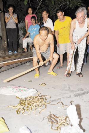 玩妹妹屄_小区居民操起棍棒打蛇