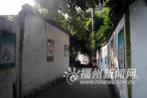 """福州:仓山区对湖街道马厂街被誉为""""文化长廊""""文化长廊"""