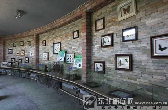 位于中山公园东北角的沈阳自然博物馆开馆了