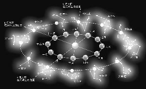 星座占卜究竟是科學還是迷信