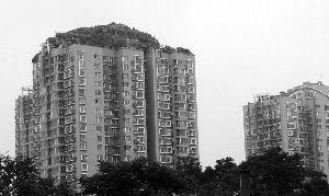 左楼楼顶建筑为违建,右楼为之前样貌。晨报记者 王巍/摄
