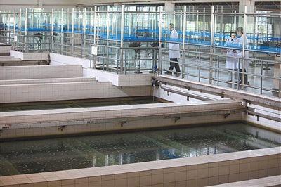 2012年5月17日,北京第九水厂,一位工作人员在介绍自来水的生产流程。新京报记者 薛�B 摄