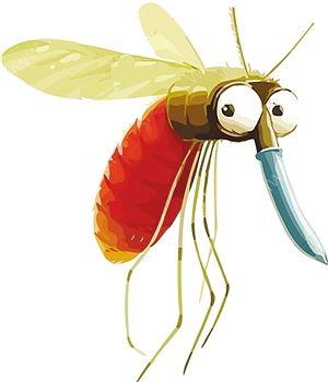 秋天蚊子毒性更大 小心孩子患上乙脑