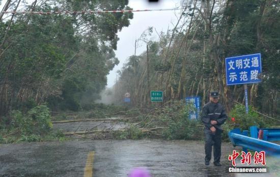"""""""威马逊""""目击记:狂风暴雨重创海口"""