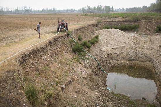 2014年8月05日,河南宝丰县,73岁的党章才在井边看守机器,井边大片庄稼干旱绝收。