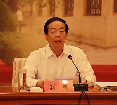 河北省委副书记赵勇。资料图