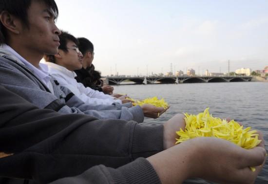 图文:汶川地震一周年菊花朵朵寄哀思