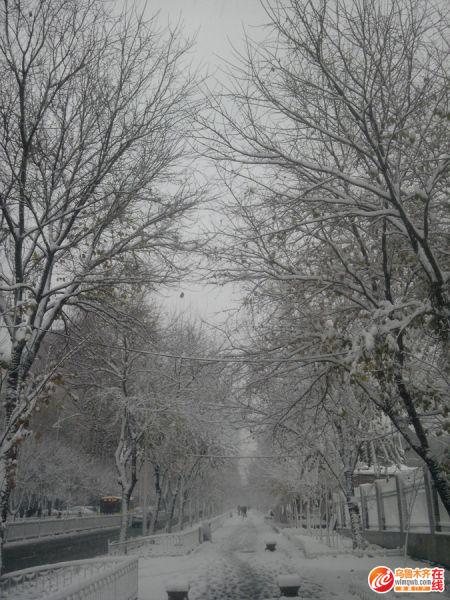 下世纪初雪