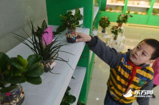 小学生用废弃的塑料瓶制作的花盆
