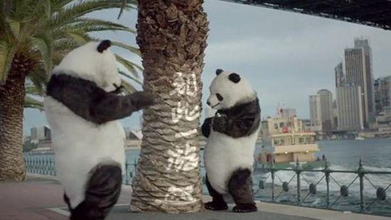 教育游客海外文明旅游的公益电视广告
