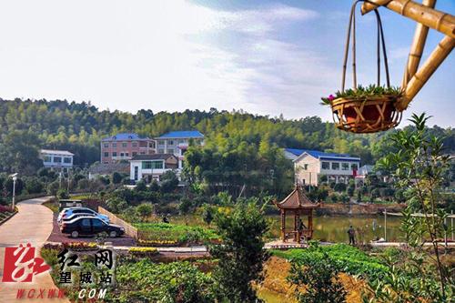 撤县设区三年长沙市望城区城乡环境品质倍升