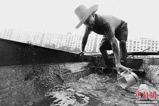他们年复一年地与河道里的污物打交道,而做伴的只有竹竿与小船。
