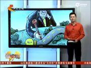 """公路直通局长祖坟 官方回应并非""""上坟路"""""""