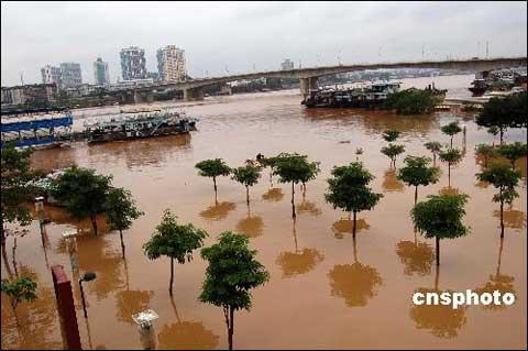阳新南宁遭遇百年来同期最大高中(校长:中新社)洪水来源广西图片
