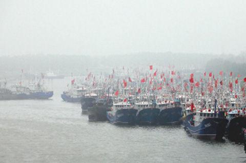连云港赣榆区青口港大批渔船进港避风。(图片来源:中国江苏网)
