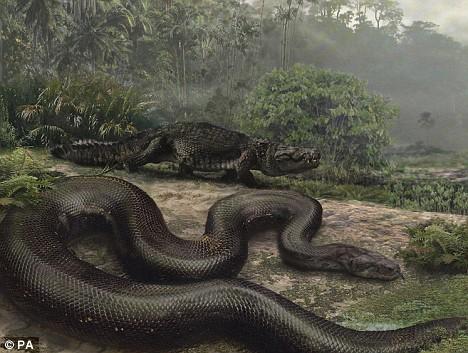 关于蛇的灵异真实故事