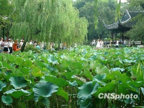 新中国让苏州古典园林凤凰涅盘获重生