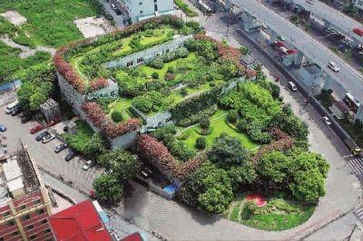 屋顶绿化 垃圾中转站成 空中花园