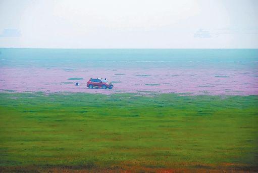 你没看错,这就是鄱阳湖