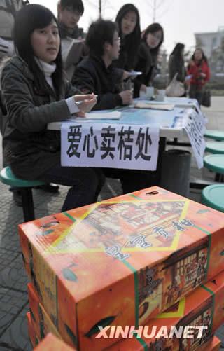 大学生在校内卖万斤橘子筹学费被抢购一空(图)