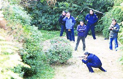 警察用微型冲锋枪击毙街头野猪