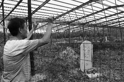 一位村民在坟地外隔着护栏观望 摄/法制晚报记者 董振杰