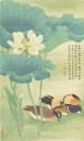 陈佩秋-荷花鸳鸯-绢本