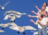 岳敏君作品欣赏 《大天鹅》 2005年作