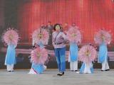 2011西安世园会渭南演出周图集