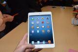 苹果 iPad Mini