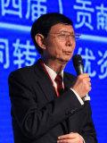 重庆力帆控股有限公司董事长尹明善