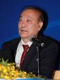 十一届全国政协副主席厉无畏