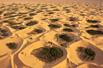 最恶劣的沙漠